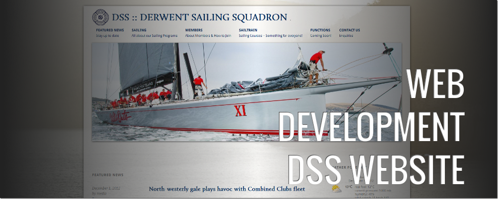 DSS Website: Web Development